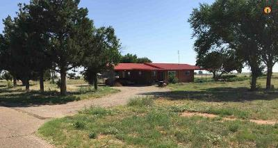 Portales NM Single Family Home For Sale: $159,000