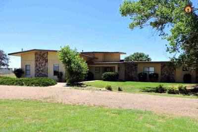 Clovis Single Family Home For Sale: 209 Springfield
