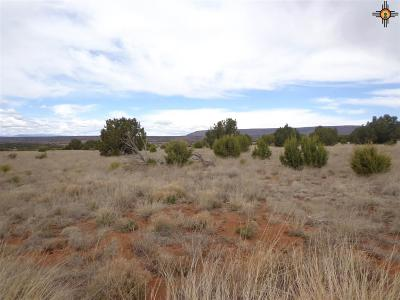 Las Vegas Residential Lots & Land For Sale: Tract 13 Moon Dance Ranch