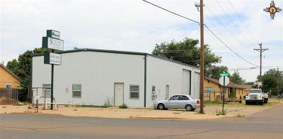 Curry County Commercial For Sale: 1120 N Prince Street