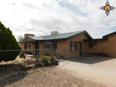 Deming Single Family Home For Sale: 1540 Acoma Rd SW
