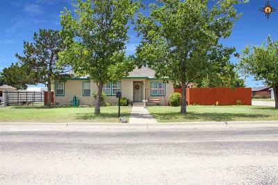 Lovington Single Family Home For Sale: 204 S 8th