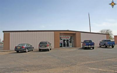 Portales Commercial For Sale: 1500 S Avenue D