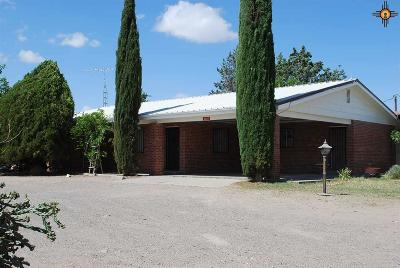 Deming Single Family Home For Sale: 2620 Silver City Hwy NW