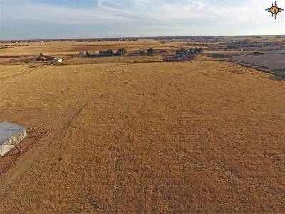 Curry County Residential Lots & Land For Sale: 965 Sr 77