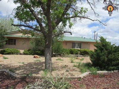 Gallup Single Family Home For Sale: 1613 Red Rock