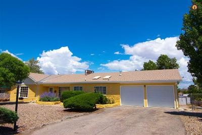 Gallup Single Family Home For Sale: 1609 Linda Drive
