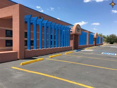 Portales Commercial For Sale: 1400 S Avenue D