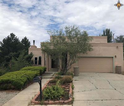Gallup Single Family Home For Sale: 1710 Linda Drive