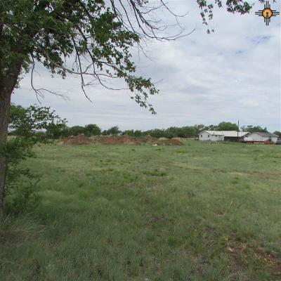 Elida Residential Lots & Land For Sale: Armstrong Lots 1-9