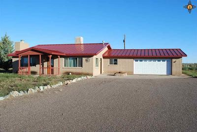 Deming Single Family Home For Sale: 1585 Acoma Rd SW