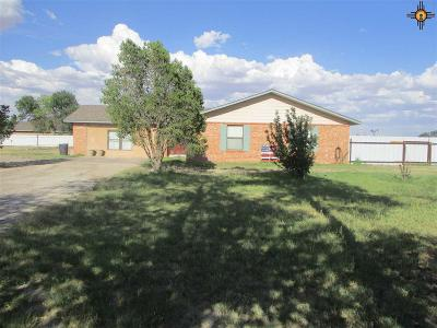 Artesia Single Family Home For Sale: R296 N 13th St