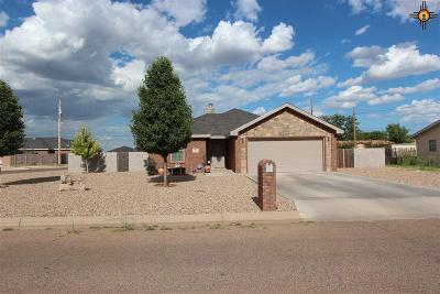 Clovis NM Single Family Home For Sale: $165,000