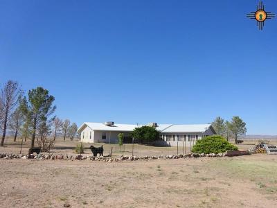 Deming Single Family Home For Sale: 18800 Candela Rd., SE