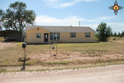 Portales Single Family Home For Sale: 486 S Roosevelt Road X