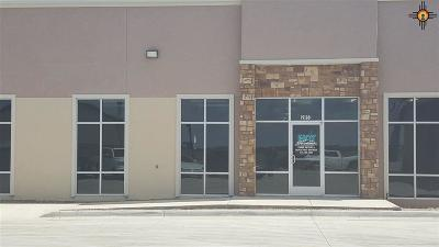 Rental For Rent: 205 E Llano Estacado Blvd