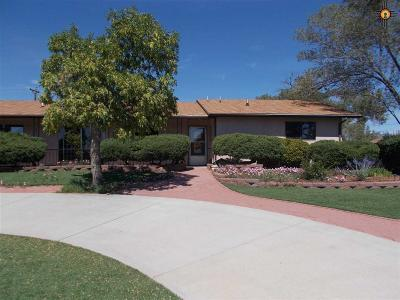 Gallup Single Family Home For Sale: 1608 Linda Dr.