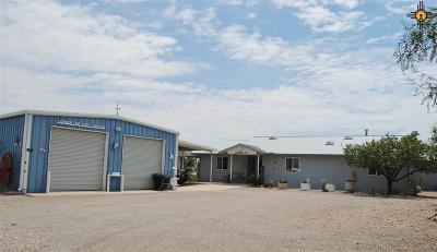 Sierra County Single Family Home For Sale: 89 S Lost Canyon