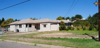 Sierra County Single Family Home For Sale: 575 W 9th Street