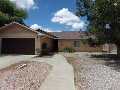 Gallup Single Family Home For Sale: 3308 Blue Hill Ave