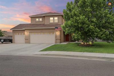 Hobbs Single Family Home For Sale: 2531 Traditions Dr.