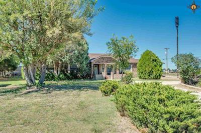 Hobbs NM Single Family Home For Sale: $299,500