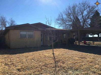 Portales Single Family Home For Sale: 225 Oklahoma Drive