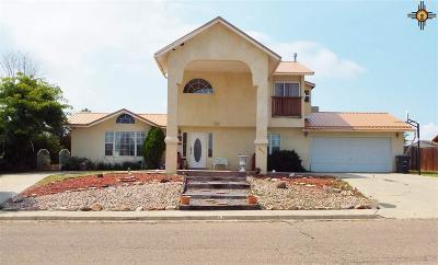 Las Vegas Single Family Home For Sale: 491 Vegas Drive