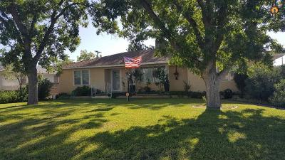 Carlsbad Single Family Home For Sale: 619 N Ninth Street