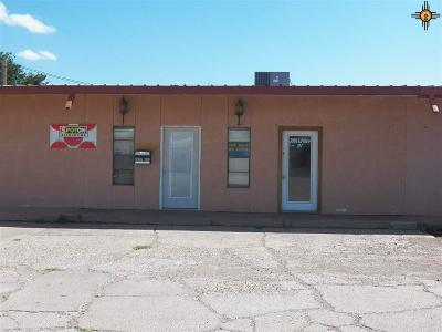 Curry County Commercial For Sale: 2905 N Prince