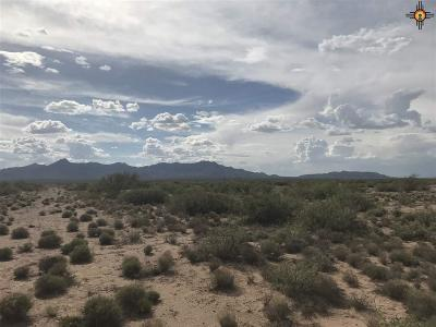 Residential Lots & Land For Sale: New Mexico SE