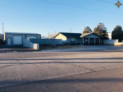 Portales Single Family Home For Sale: 610 E 1st St.