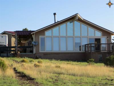 Catron County Single Family Home For Sale: 40 E Rock Springs Loop
