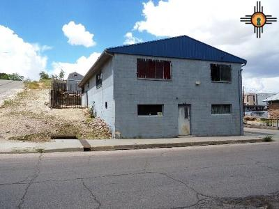 Gallup Single Family Home For Sale: 510 Second