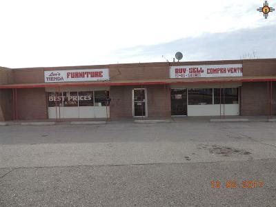 Commercial For Sale: 1000 W Spruce