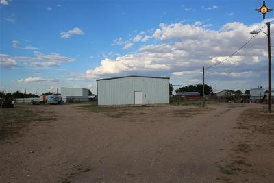Commercial For Sale: 5506 Singletree Road
