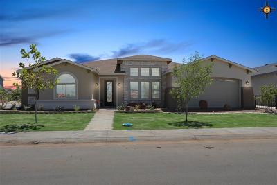 Hobbs Single Family Home Under Contract-Don't Show: 5201 W Dark Horse Road