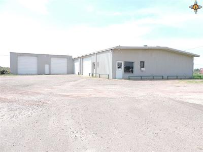Commercial For Sale: 1605 E Mabry Drive