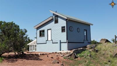 Catron County Single Family Home For Sale: 2 Loren Lane