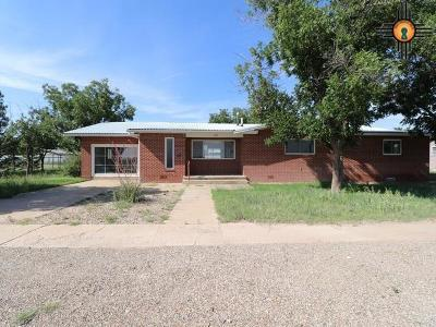Portales NM Single Family Home For Sale: $127,000