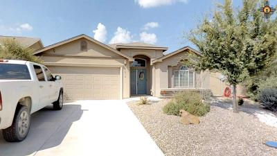 Hobbs Single Family Home For Sale: 5012 W Dark Horse Rd