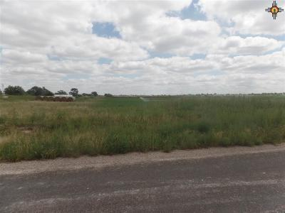 Portales Residential Lots & Land For Sale: 751 S Roosevelt Rd R 1/2