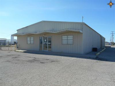 Hobbs NM Commercial For Sale: $265,000