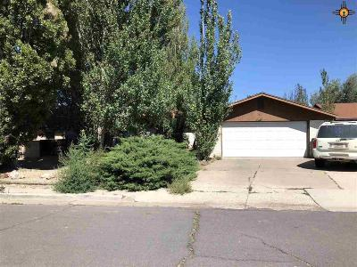 Gallup Single Family Home For Sale: 3416 Blue Hill