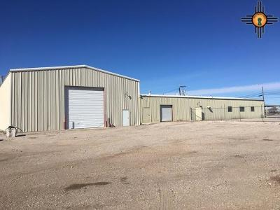 Hobbs NM Commercial For Sale: $1,350,000