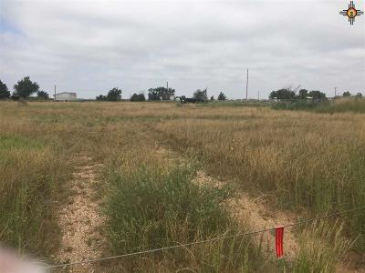 Clovis Residential Lots & Land For Sale: 300 Dixie