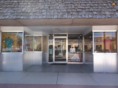 Commercial For Sale: 213 S Canyon Street