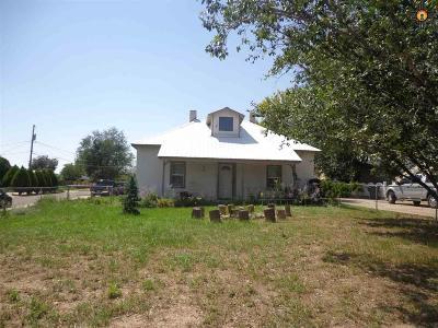 Las Vegas Single Family Home For Sale: 603 Chavez Street