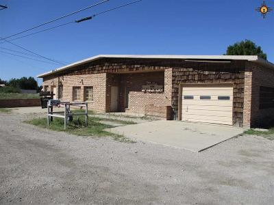 Commercial For Sale: 1404 S 13th St