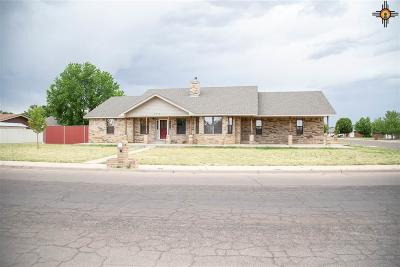 Clovis NM Single Family Home For Sale: $154,900